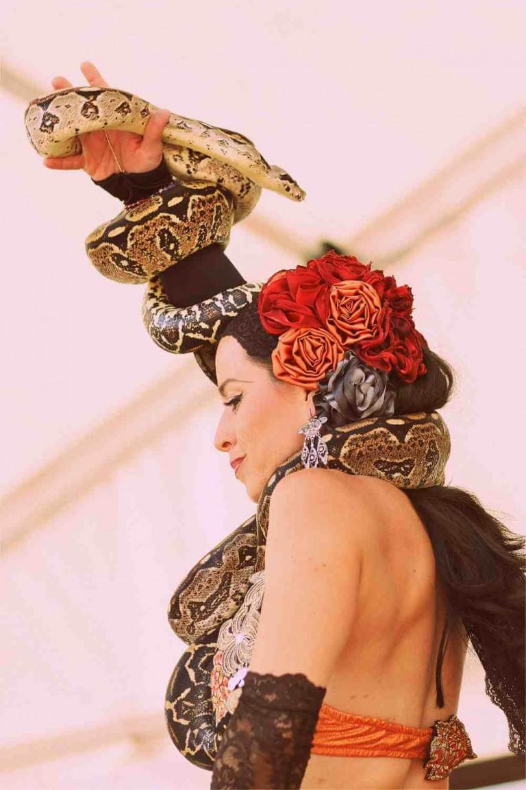 Tanec a hadi (15)